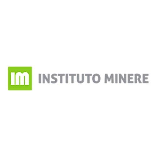 Instituto Minere